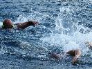 https://www.lacicala.org/immagini_news/16-09-2019/grande-successo-del-campionato-di-nuoto-di-mezzo-fondo-al-lago-di-nemi-100.jpg