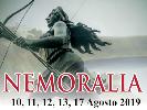 https://www.lacicala.org/immagini_news/19-08-2019/nemi-arriva-nemoralia-2019-100.png