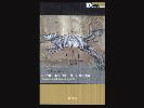 https://www.lacicala.org/immagini_news/20-09-2019/euroma2-lautore-andrea-catarci-presenta-il-libro-generazione-di-rimessa-100.png