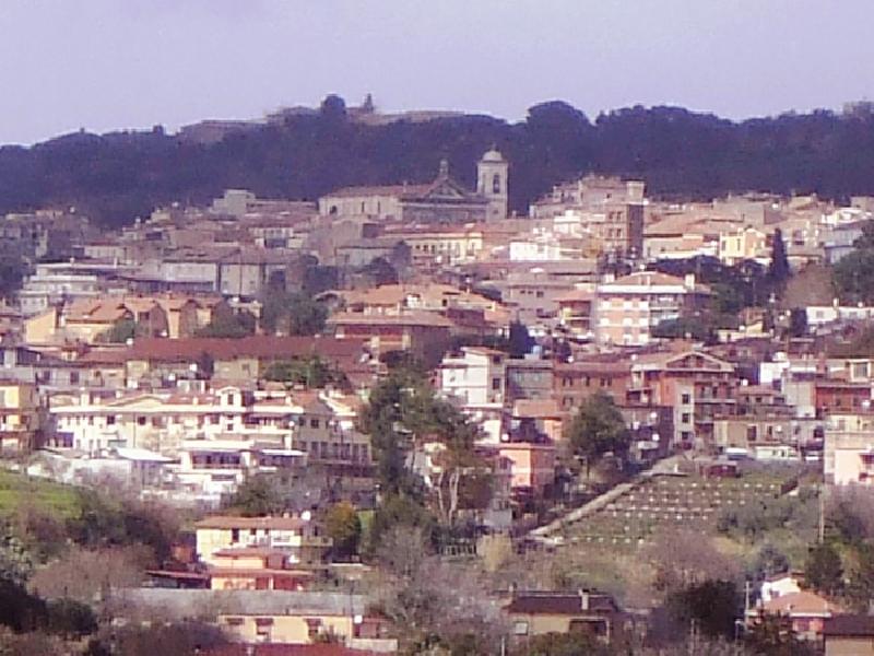 https://www.lacicala.org/immagini_news/21-05-2019/albano-laziale-giunta-approva-rifacimento-manto-stradale-trento-600.jpg