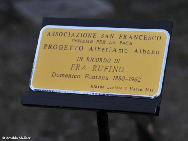 https://www.lacicala.org/immagini_news/21-05-2019/albano-laziale-piantato-leccio-ricordo-rufino-600.png
