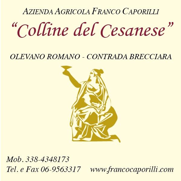 https://www.lacicala.org/immagini_news/21-05-2019/alla-scoperta-della-cantina-colline-del-cesanese-la-tradizione-incontra-la-rinnovazione-600.jpg