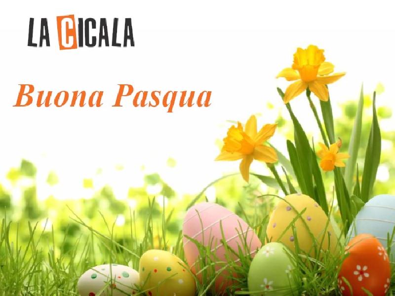 https://www.lacicala.org/immagini_news/21-05-2019/auguri-pasqua-redazione-cicala-600.png
