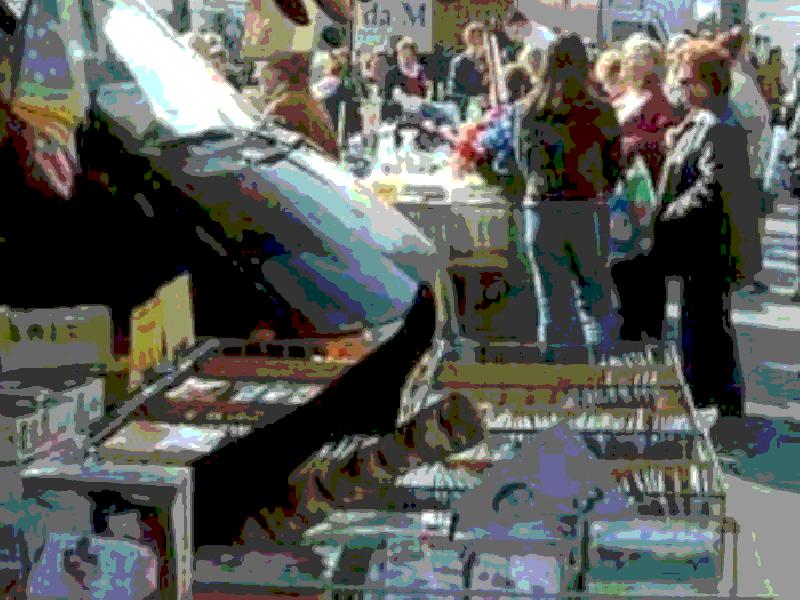 https://www.lacicala.org/immagini_news/21-05-2019/frascati-sospeso-il-mercato-settimanale-di-cocciano-in-occasione-della-tappa-di-partenza-del-giro-ditalia-600.png