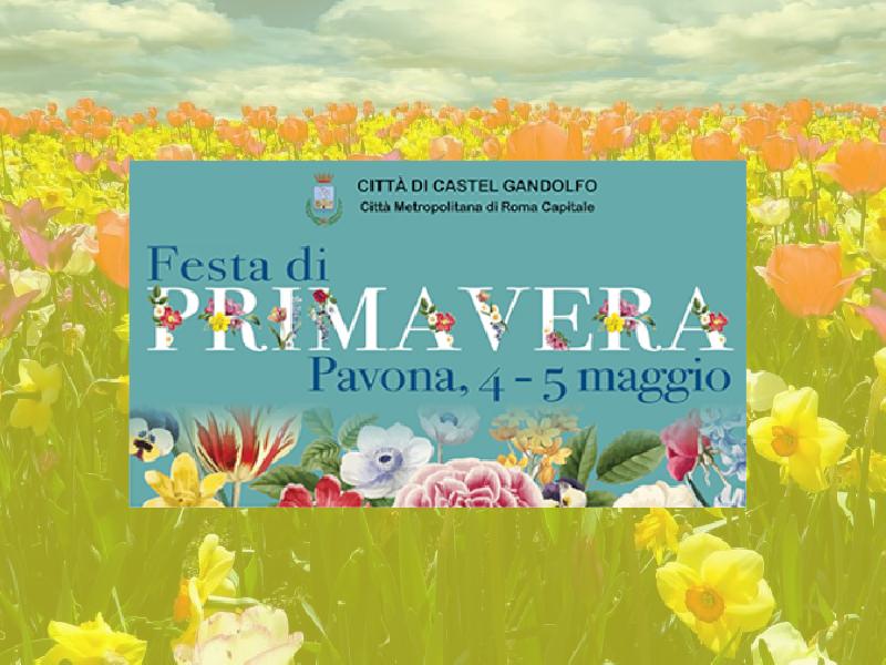 https://www.lacicala.org/immagini_news/21-05-2019/maggio-pavona-colora-festa-primavera-600.png