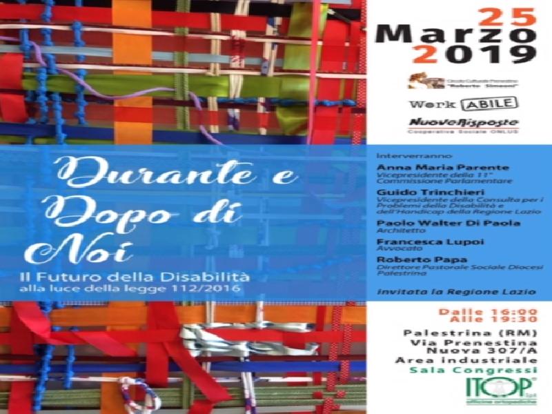 https://www.lacicala.org/immagini_news/21-05-2019/palestrina-convegno-futuro-disabilita-luce-legge-1122016-sala-congressi-itop-600.png