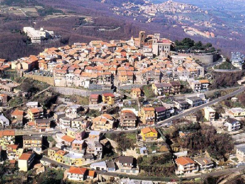 https://www.lacicala.org/immagini_news/21-05-2019/rocca-priora-nasce-consorzio-loco-castelli-romani-600.png