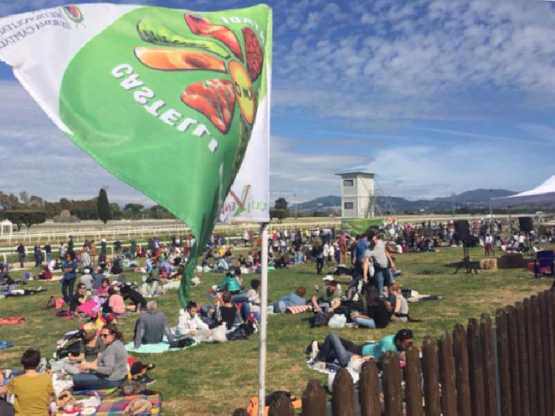 https://www.lacicala.org/immagini_news/21-05-2019/terra-musica-2019-festa-maggio-contadino-roma-600.png