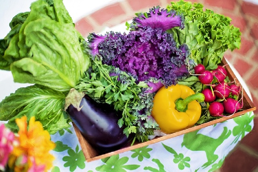 https://www.lacicala.org/immagini_news/21-06-2019/dieta-veloce-5-kg-in-7-giorni-menu-settimanale-600.jpg